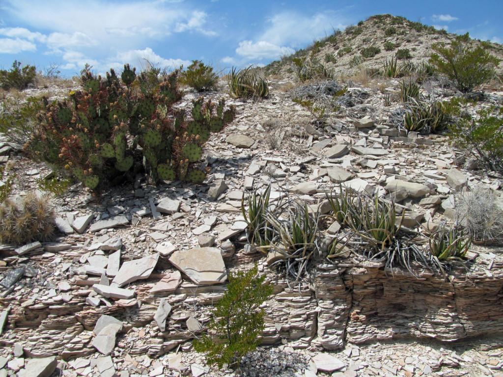 Shale peak