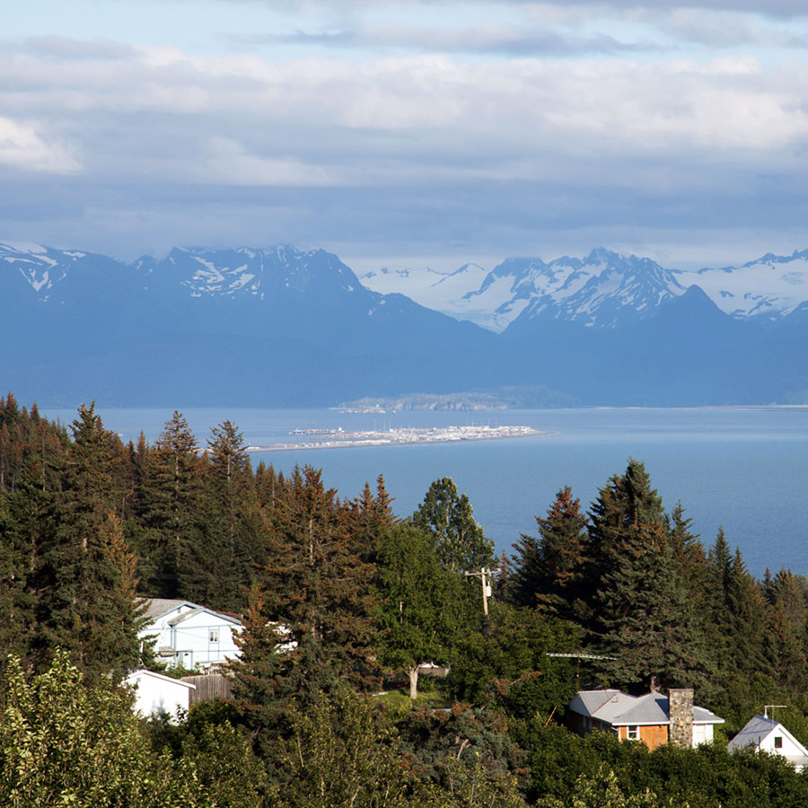 The bit of land stretching into the water in the distance is the Homer Spit