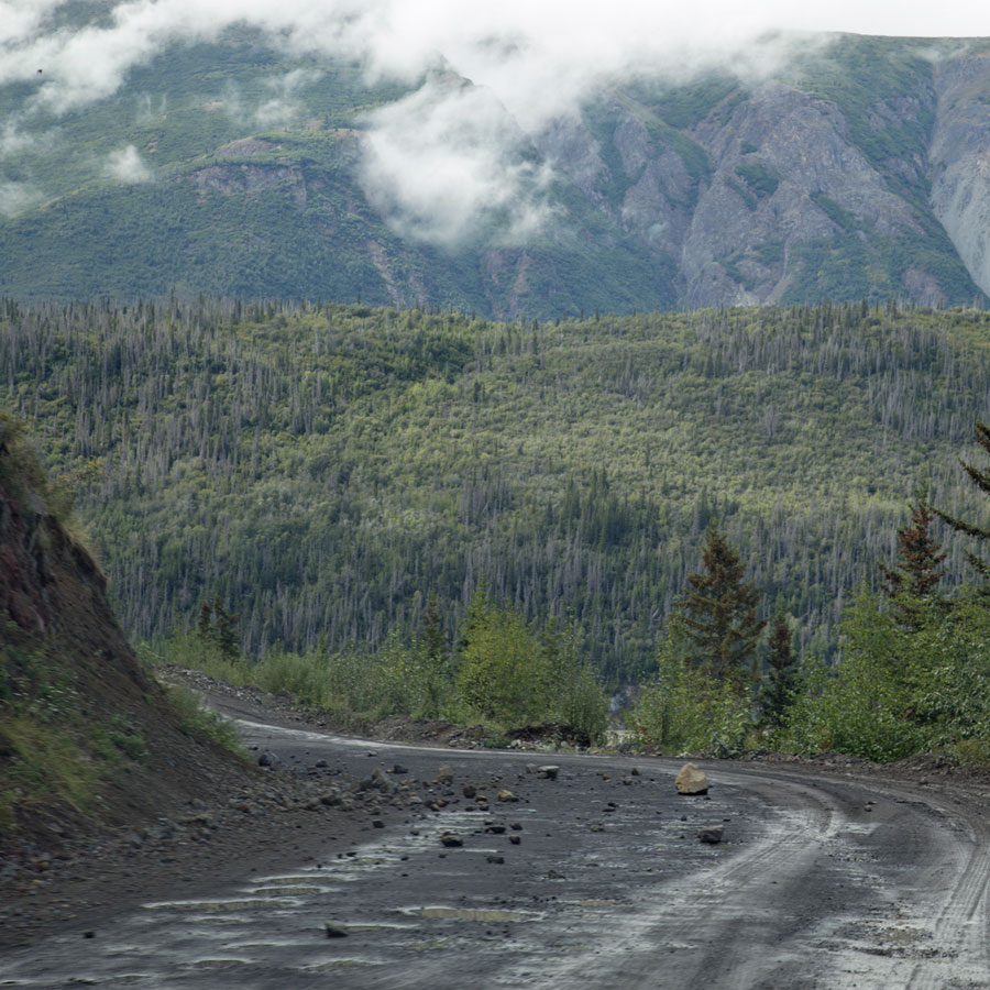 Bouncy Alaskan roads